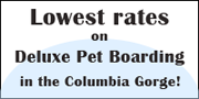 Lowest Rates On Dog Boarding